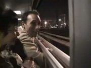 Sophia a mature ins stockings analfucked in a train
