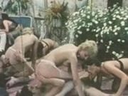 Vintage Sex Orgy 