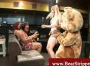 Cfnm bear mascot gets stripped