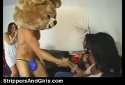 Dancing bear party with facial on girls in the audience