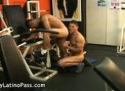Arnold and Luke latin gay fuck and suck