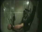 Bear in Harness Fucks Self w Big Dildo