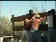Cowboy Bear Orgy