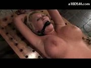 Busty Blonde Bondaged #2