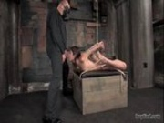 amber rayne@hogtied clip