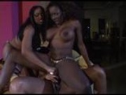 Kitten, Carmen Hayes, & Kelly Star