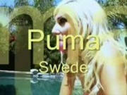 AbsolutePureEvil - 07 - Puma Swede