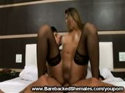 Stunning Shemale Does Bareback Sex
