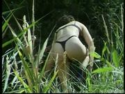 Bush Stalker