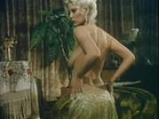 Various retro scenes of big cocks and tight pussies - Golden Age Media