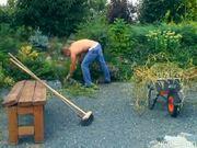 Gardner says no weeds in this bush pt 1/4