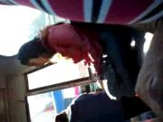 flash microbus