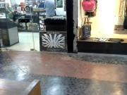 Rabuda estilo cavala na loja