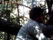 Bear fucks ass in woods