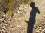 outdoor shadow