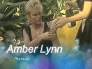 Amber Lynn Pornstar