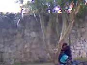 follando en la calle 07