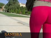 Fuchsia cameltoe