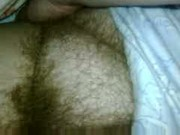 big hairy bush.