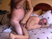 Daddy Bear Breeds Ronnie's Hole