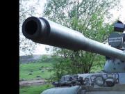 Big Tits Tank Girl