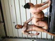 sex chamber 1