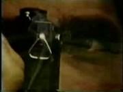 Shutter Bug - Cara Lott & Ron Jermey Vintage Loop