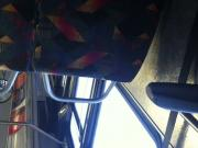thank you for getting up denver bus upskirt voyuer