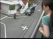 wife cheat