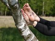 FLEXING THE WRINKLED SOLES OF MY FEET SITTING ON A TREE