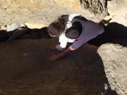 Tugas apanhados nas rochas