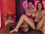 2 hot phonesex brunettes