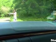 Teen hitchhiker fucks in car