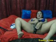 Sexy and Busty Shemale Flirts in Cam