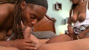 Amateur black girls having fun with a white dude