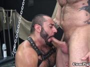 Dilf toying bears ass before barebacking