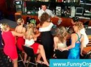 Classy sluts hot for bartender cock