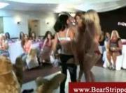 Dancing naked amateurs seduce a bear