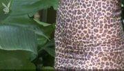 Wendy rider - shemuscle - strip leopard minidress