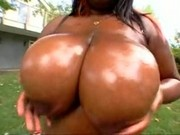 Black BBW Too Much