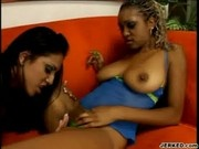 Lesbian Action With Ice La Fox and Tierra Quinn - Foxy Black Butts