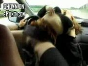 Fucking while driving
