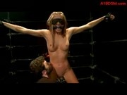 Mouthgagged Blonde Girl Standing With Tied Legs And Arms In The Cage Fucked From Behind Pussy Stimul