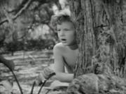 Tarzan Finds a Son 1939