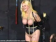 Busty blonde electro torments