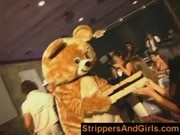Dancing bear stripper party