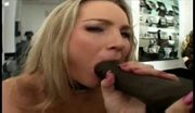 Flower tucci vs lexington steele