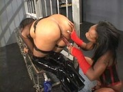 Beauty Dior is an anal diva