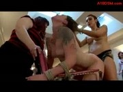 Girl Tied To Chair In Doggy Fucked With Strapon While Sucking Strapon In Front Of Women At The Hair