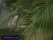 Ladyboy beauty outdoor garden ass showoff and blowjob